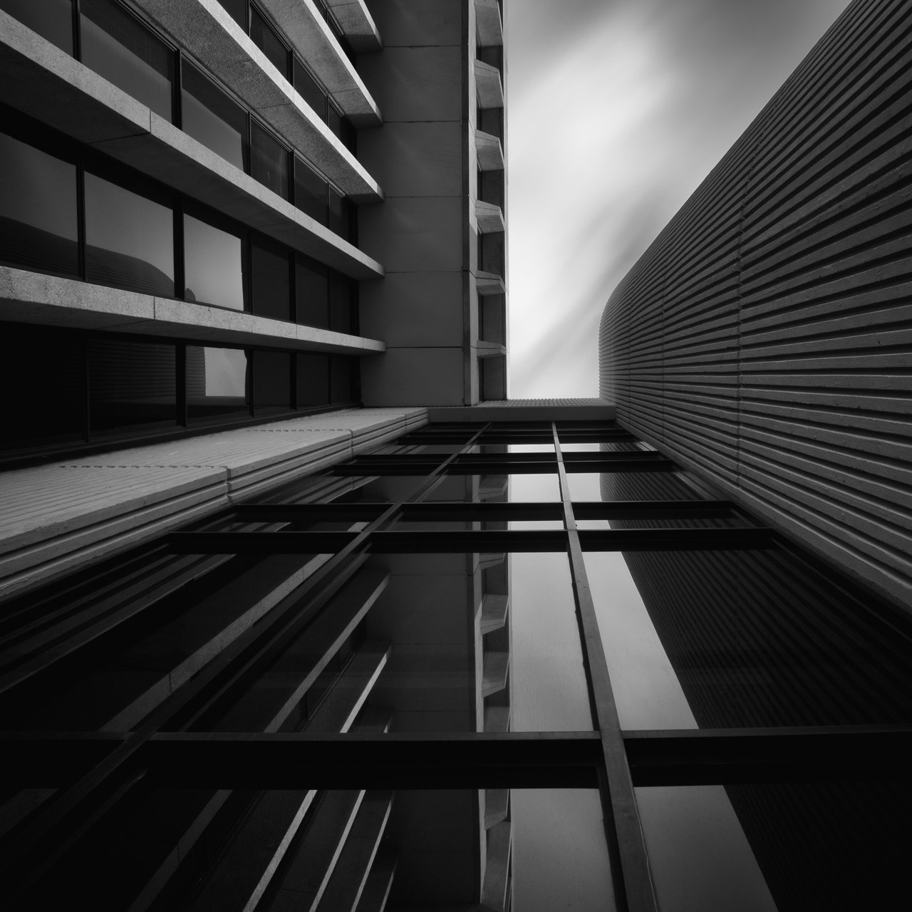 Photograph intelligent life forms by Brian Day on 500px