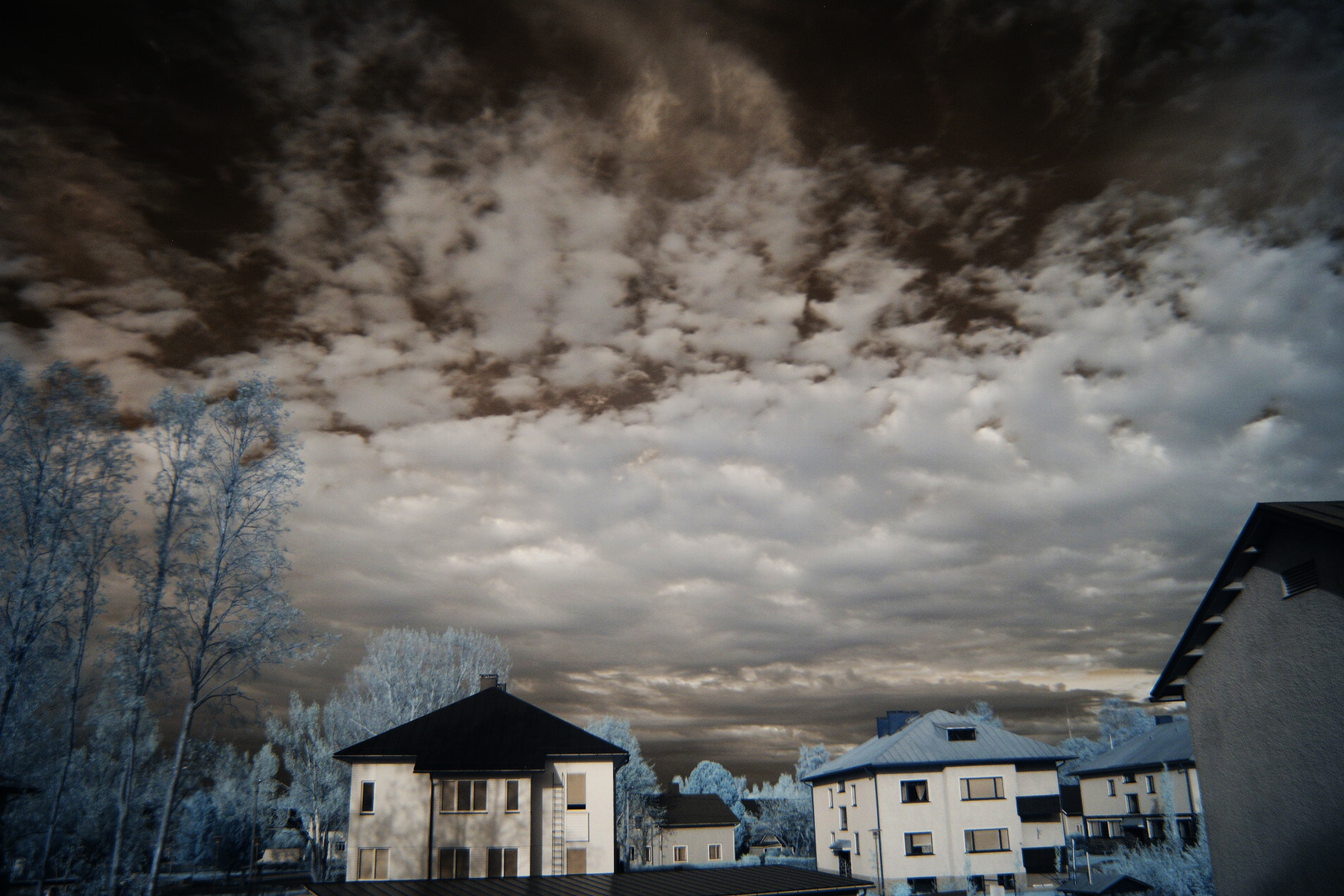 Photograph IR photography  by Azra Ferhatovic on 500px