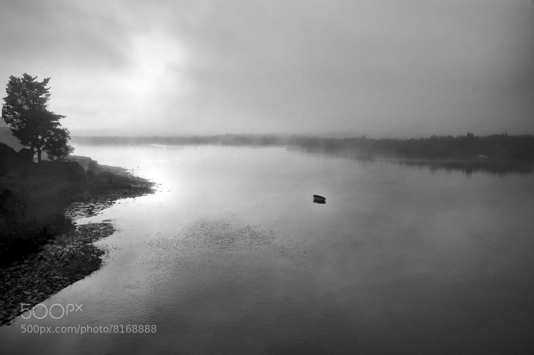 Photograph Entre la niebla by MIGUEL BECERRA  on 500px