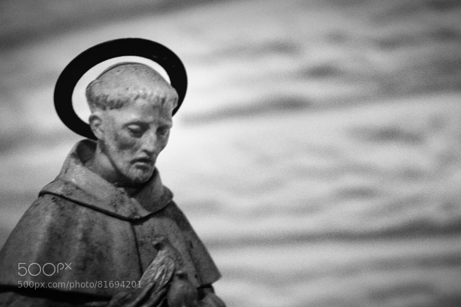 Photograph Saint Francis by Jeff Carter on 500px