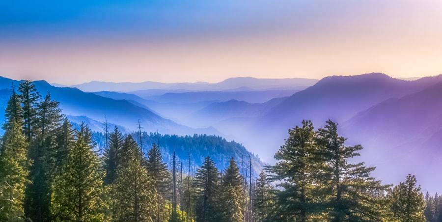 A Yosemite evening..