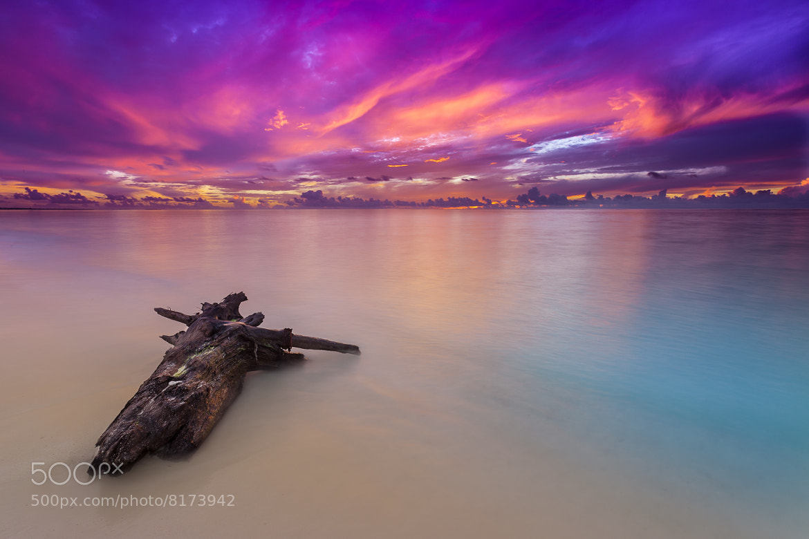 Photograph Purple Sunrise by Jay Andruckow on 500px