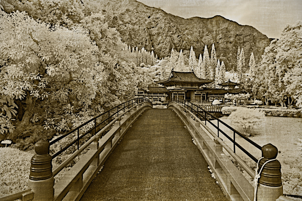 Photograph Byodo-In Temple - Oahu, Hawaii - infrared by Aaron Sheldon on 500px