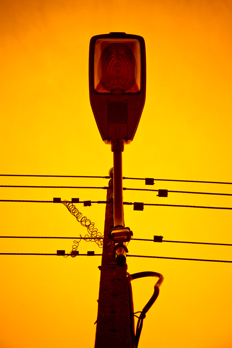 Photograph Electric pole by Willy Picard on 500px