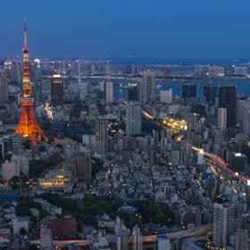 Tokyo Tower after dawn