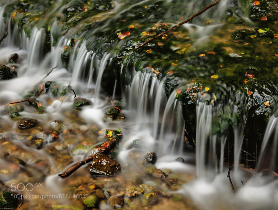 Photograph Autumn cascade by Maggie_Photography on 500px
