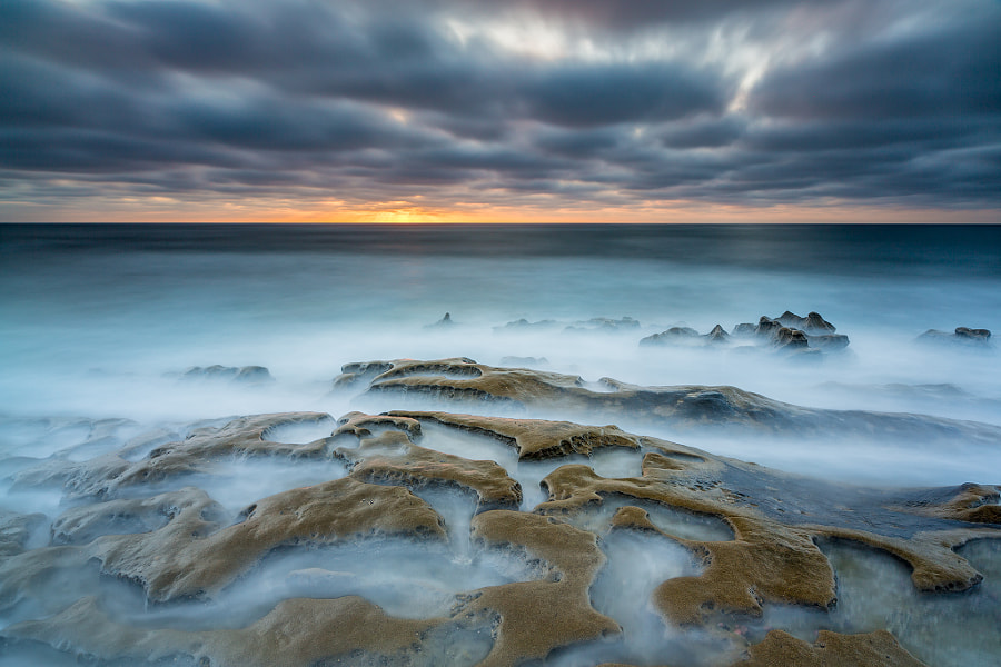 Photograph Ocean Brain by Francesco Gola on 500px