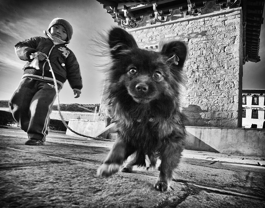 Photograph kid and his dog by Ben  on 500px