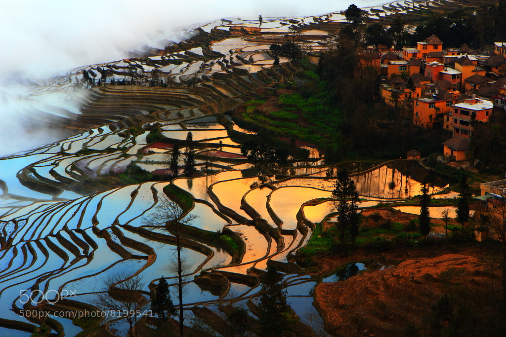 Photograph terraces of  Yuanyan 1 by 铁汤  on 500px
