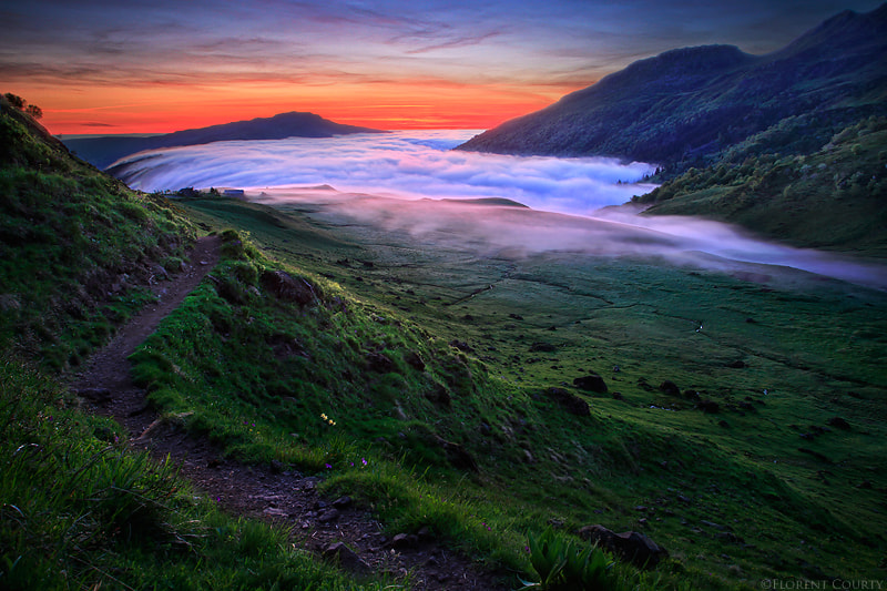 Photograph Wilderness' Magic by Florent Courty on 500px