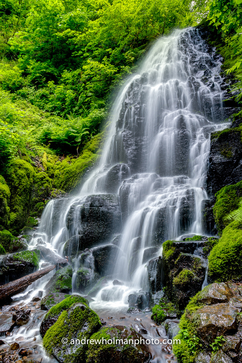 Photograph Fairy Falls by Andrew Holman on 500px