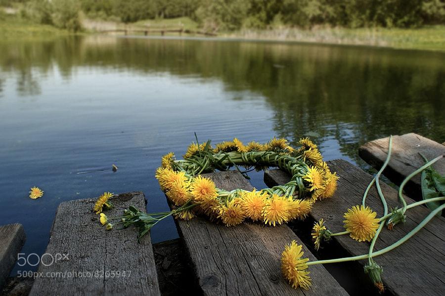 Photograph Wreath. by Elena Kolesneva on 500px