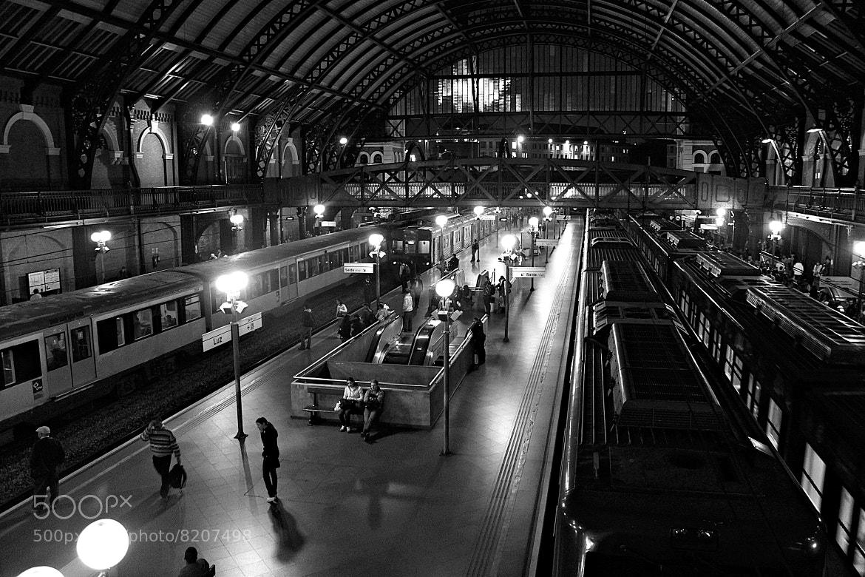 Photograph Estação da Luz by Alex Albino on 500px