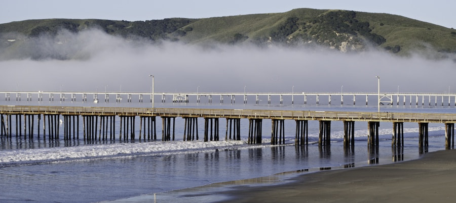 Photograph California Morning by George Gibbs on 500px