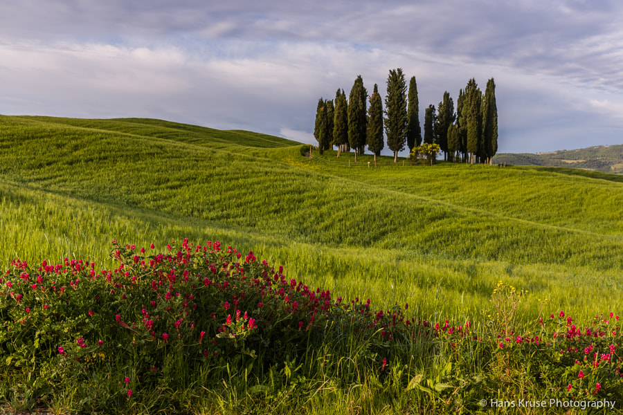 This photo was shot during the Tuscany May 2014 photo workshop. There is a new Tuscany May 2015 photo workshop available for bookings with 5 seats available.