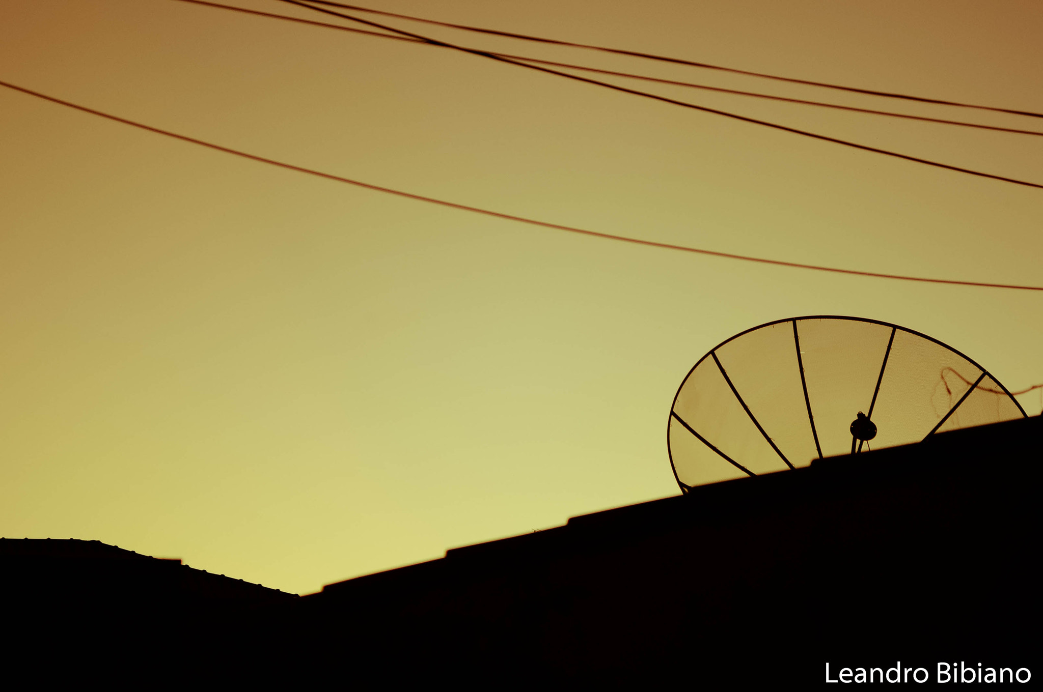 Photograph Antena by Leandro Bibiano on 500px