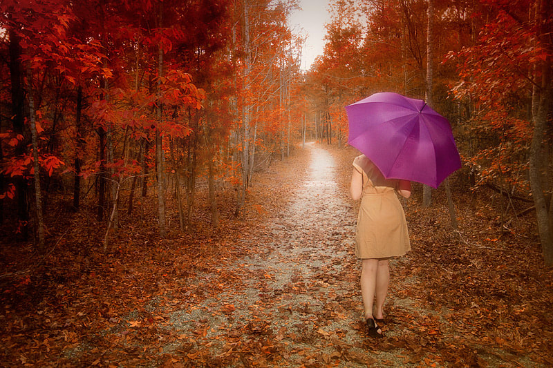 Photograph Autumn by wendy  on 500px