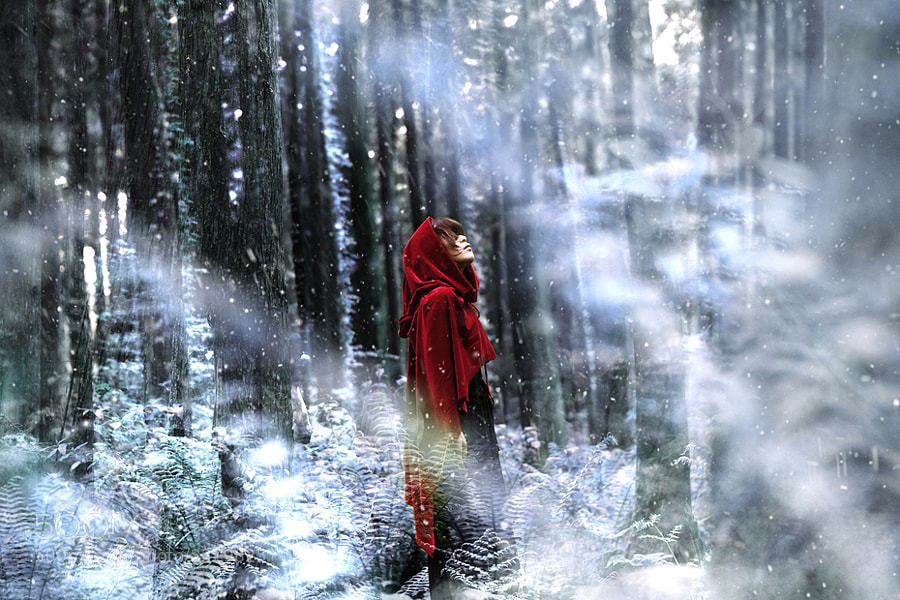 Photograph Red Riding Hood by W Minhyuck on 500px