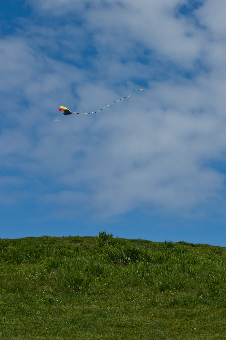 Photograph Kite by Bruno Bergher on 500px