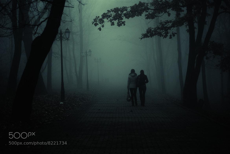 Photograph Fog.. by Evgeniy Koval on 500px