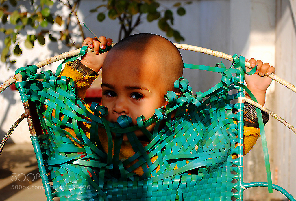 Photograph Hide and seek  by Motiur Rahman on 500px