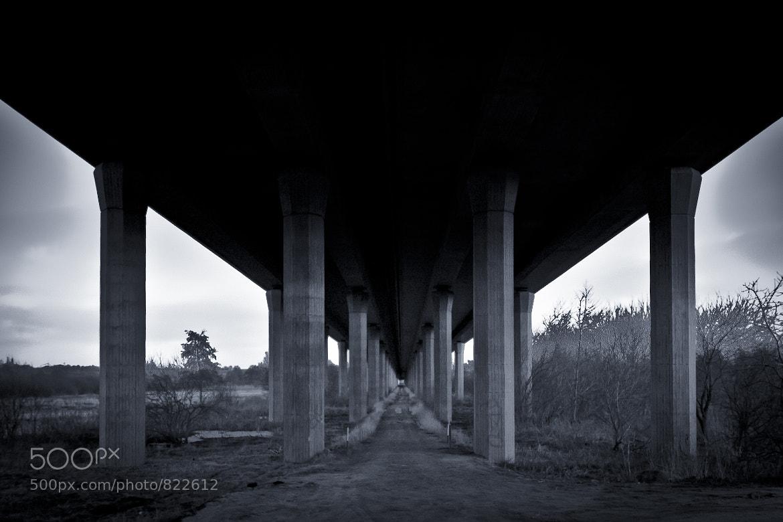 Photograph Das Frösteln - The chills by Steffen Remter on 500px