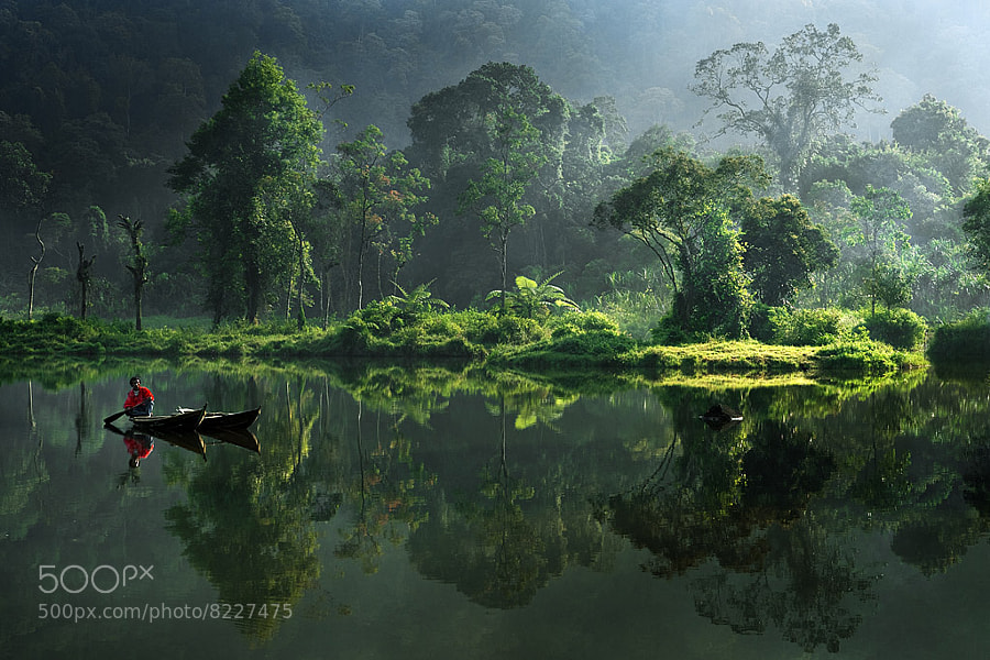 Photograph Morning Has Broken by Iwan Tirtha on 500px