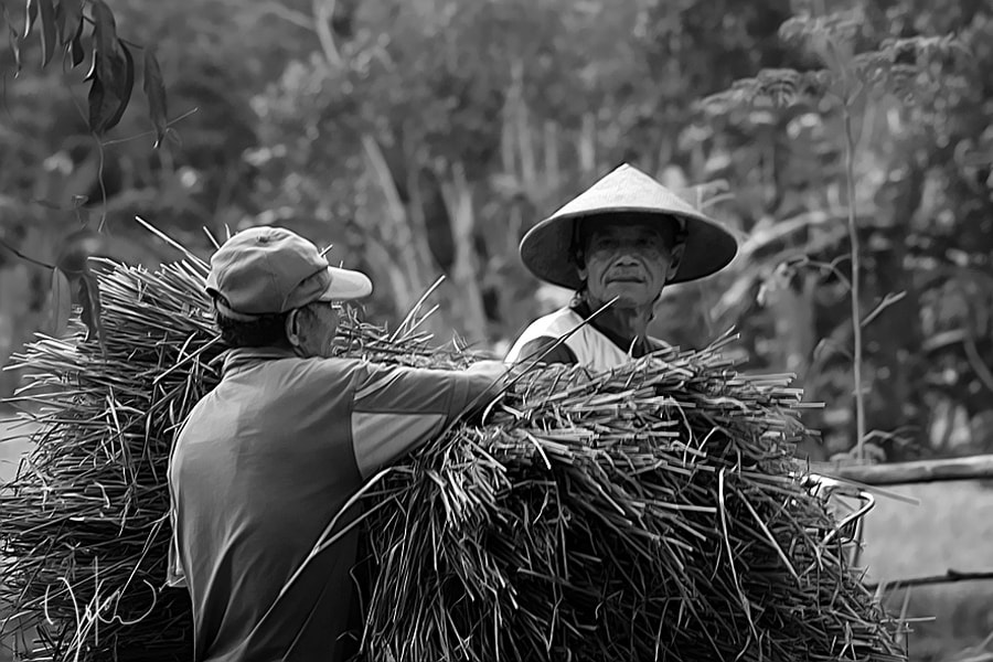 Photograph farmers activities  by 3 Joko on 500px
