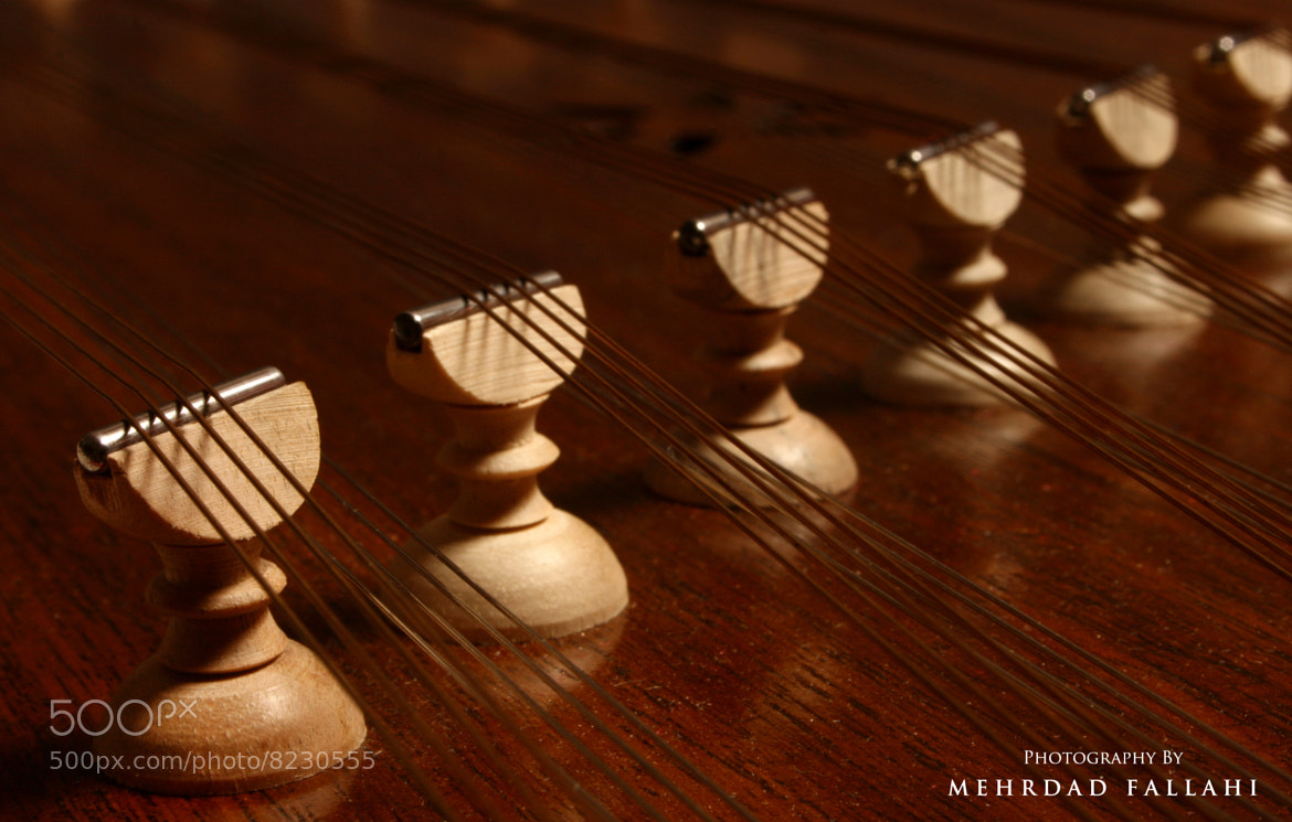 Photograph Santoor by Mehrdad Fallahi on 500px