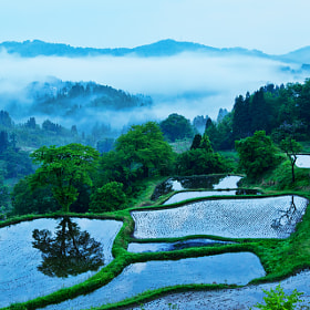After the rain by MIYAMOTO Y (MIYAMOTO_Y)) on 500px.com