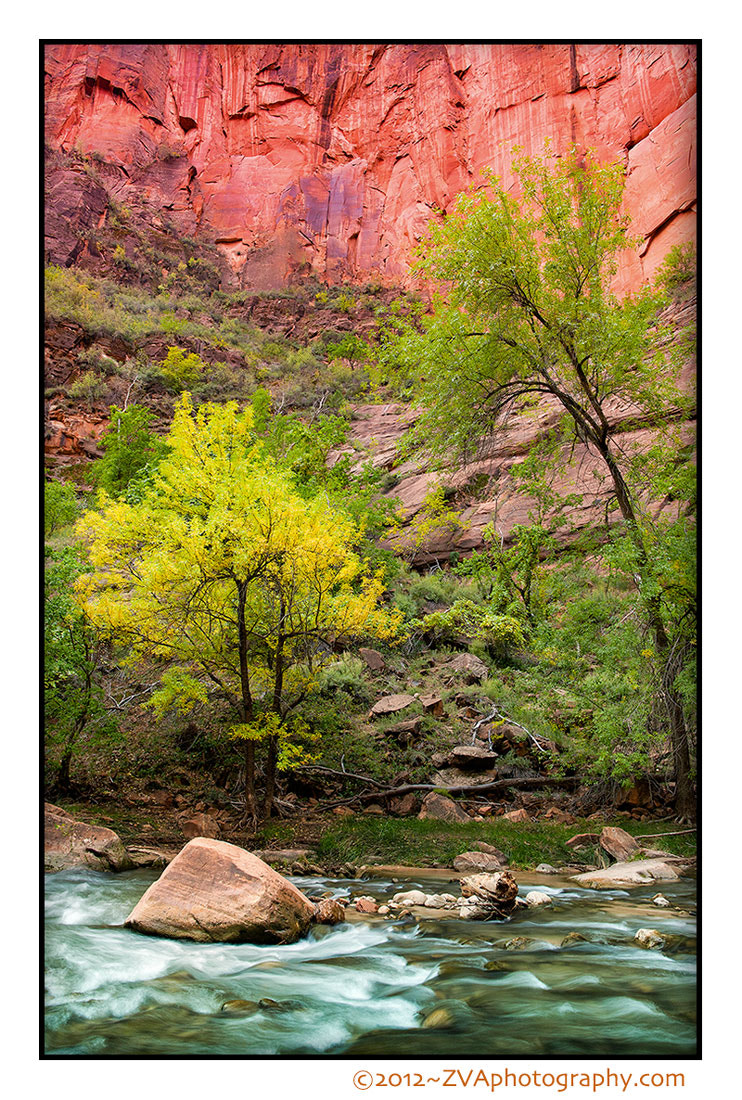 Photograph Zion by Zeph Van Allen on 500px