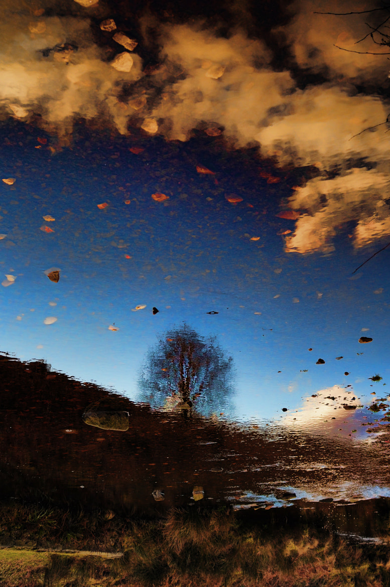 Photograph Reflection of the sky by Katy and George on 500px