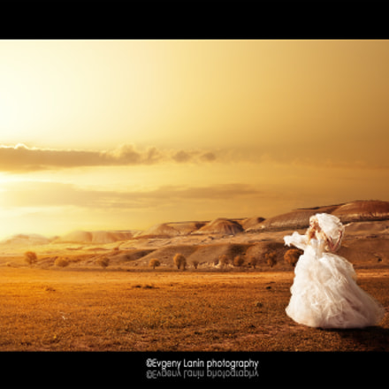 In the golden sunset captivity