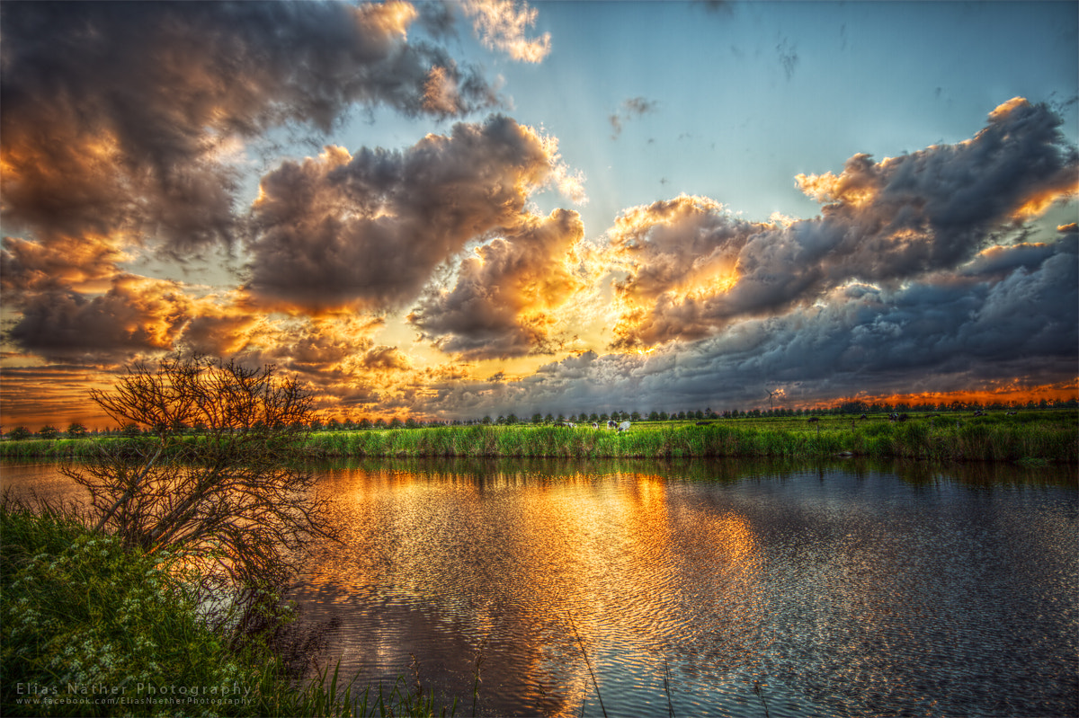Photograph Golden Sunset by Elias Näther on 500px