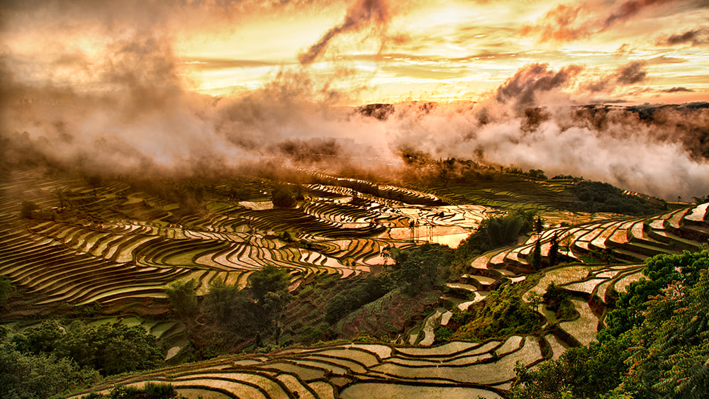 Photograph Yuanyang Sunset by William Yu on 500px