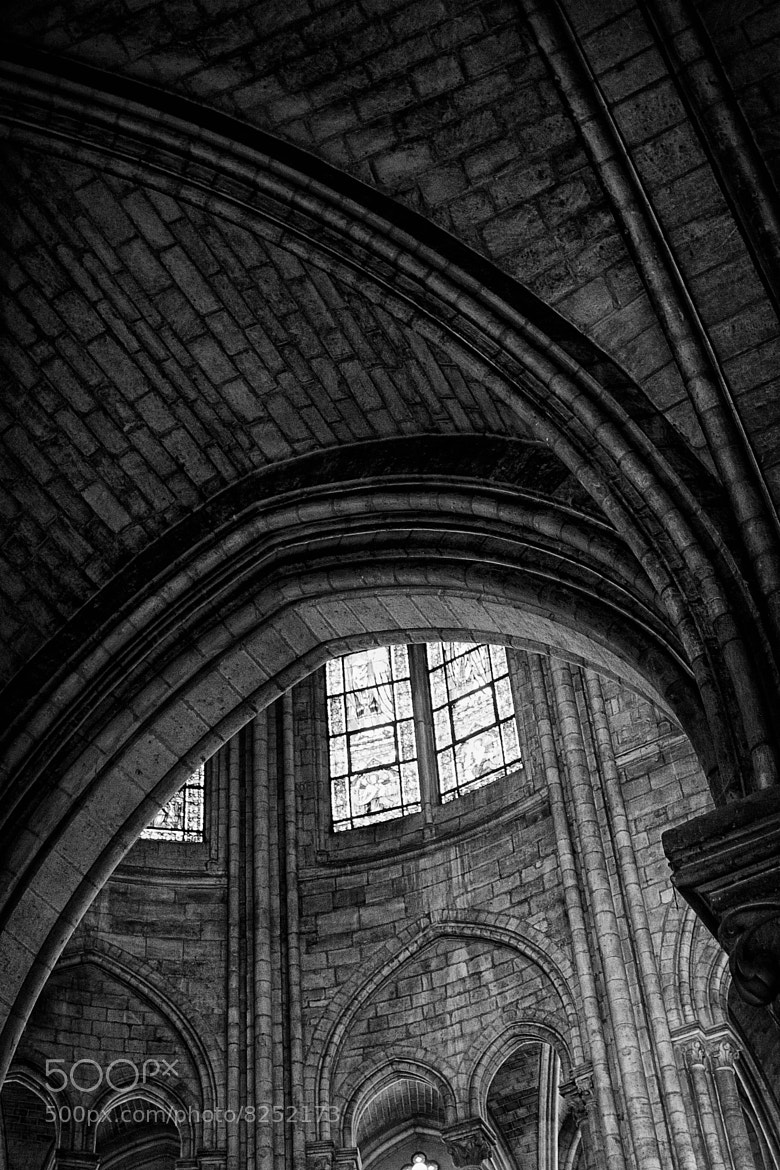 Photograph .notre dame. by Meadow Hill Photography on 500px