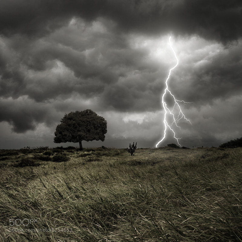 Photograph Storm, Thunder and Lightning by Carlos Gotay on 500px