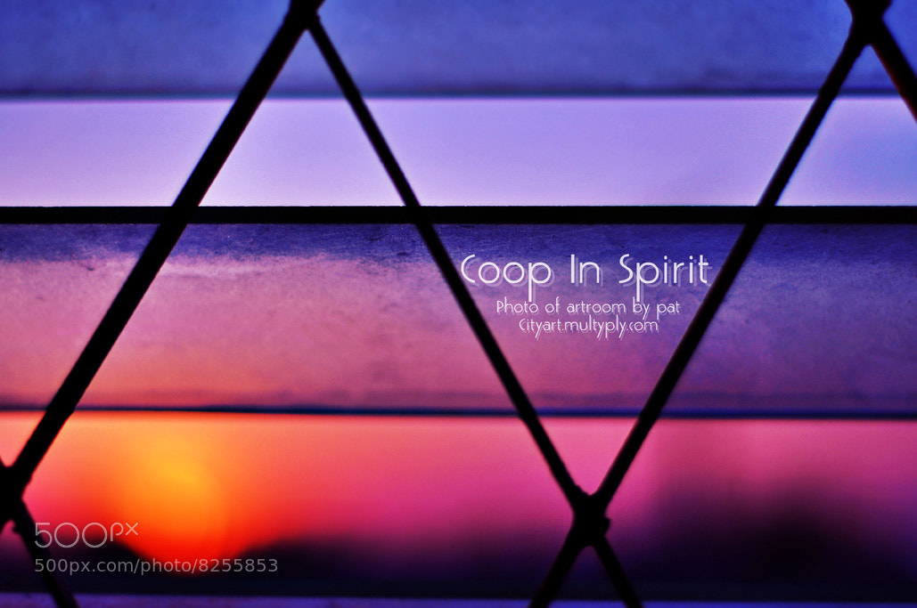 Photograph coop in  spirit by cityart  on 500px