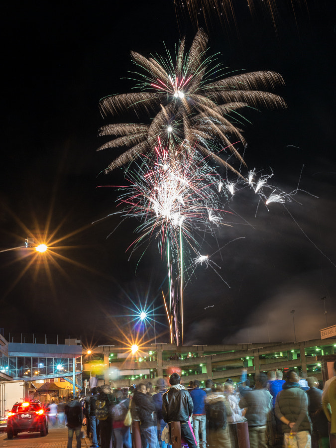 "Photograph Cabramatta Moon Festival Fireworks ""Palm Tree"" by Travis Chau on 500px"