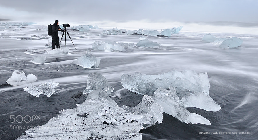 Photograph The Videographer by Marsel van Oosten on 500px