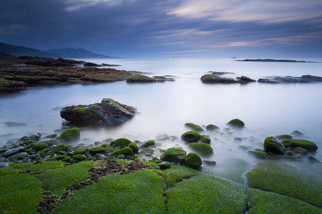Photograph Mossy Lastrón by Andoni Lamborena on 500px