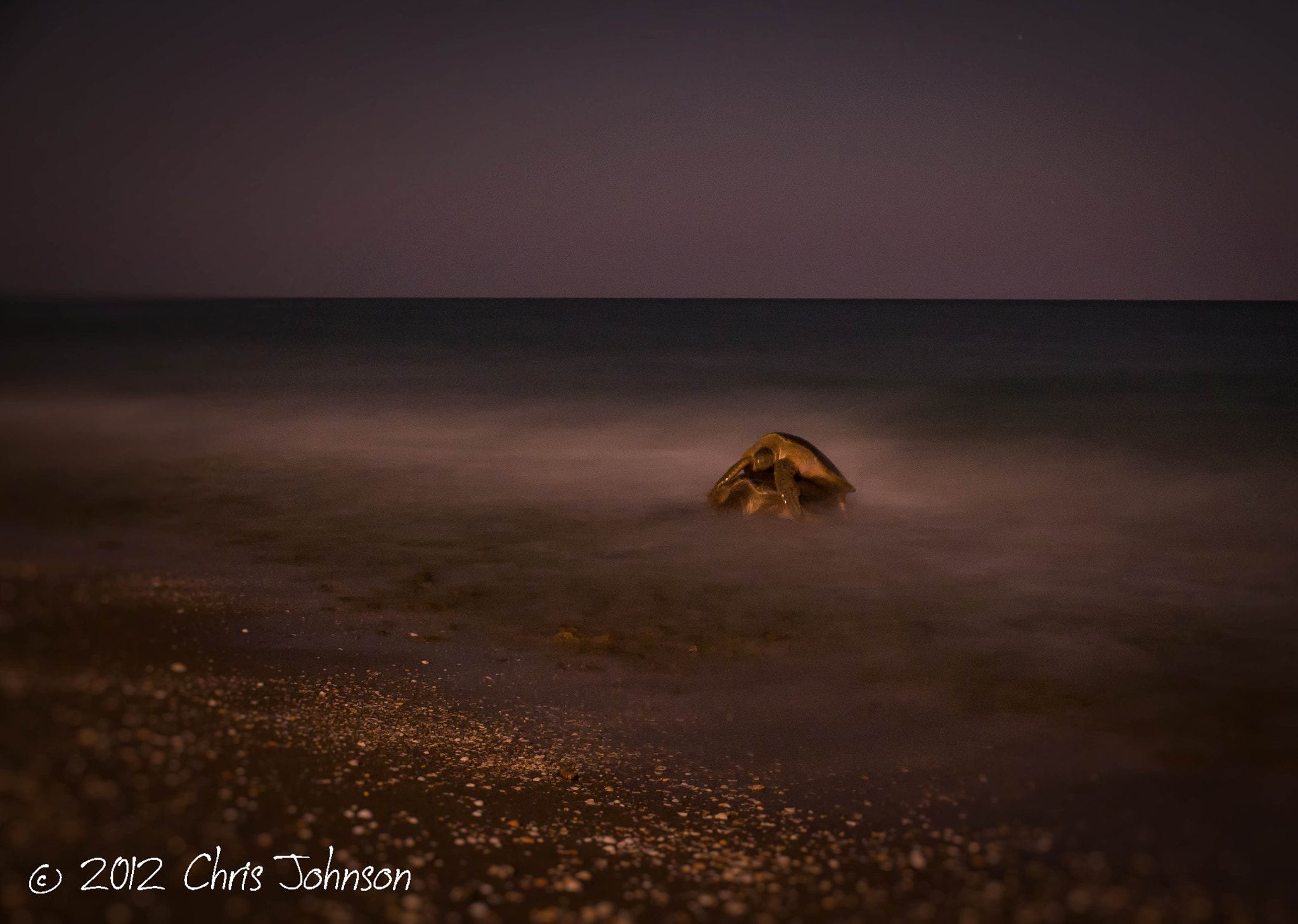 Photograph Under the cover of night by Chris Johnson on 500px