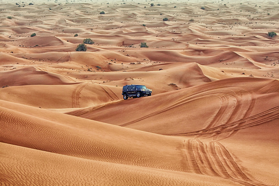 The Desert in Dubai. by Asim Arshad on 500px.com