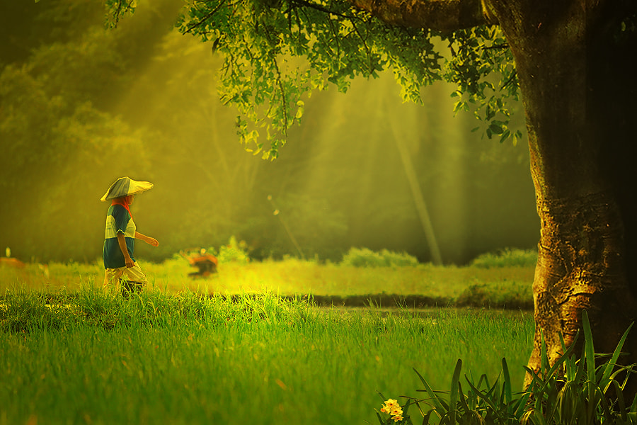 Photograph morning activities by Uda Dennie on 500px