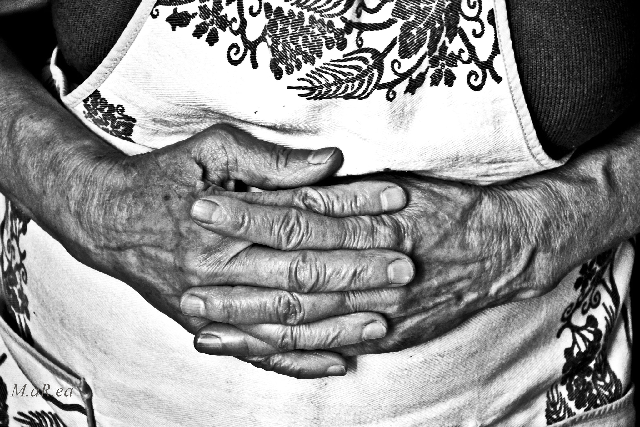 Photograph Hands by Martina Rio on 500px