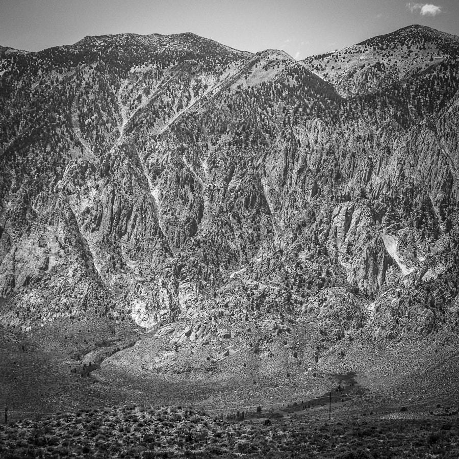 a mountain's texture