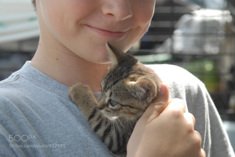 Photograph Kitty Love by Lynn Magnuson on 500px