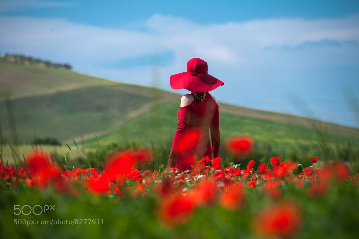 Photograph Red in Tuscany by Gleb Tarro on 500px