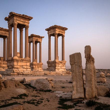 Palmyra Ruins Sunrise