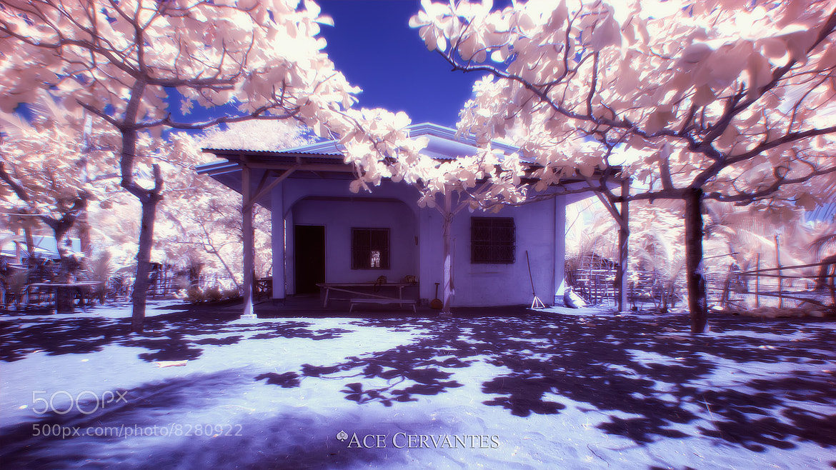 Photograph The Abode (Infrared) by Ace Cervantes on 500px